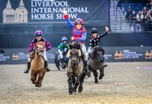Liverpool horse show returns